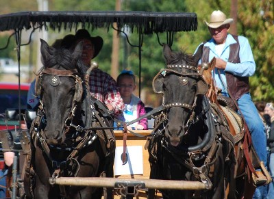 Rodeo Parade and Buffalo Trail BBQ